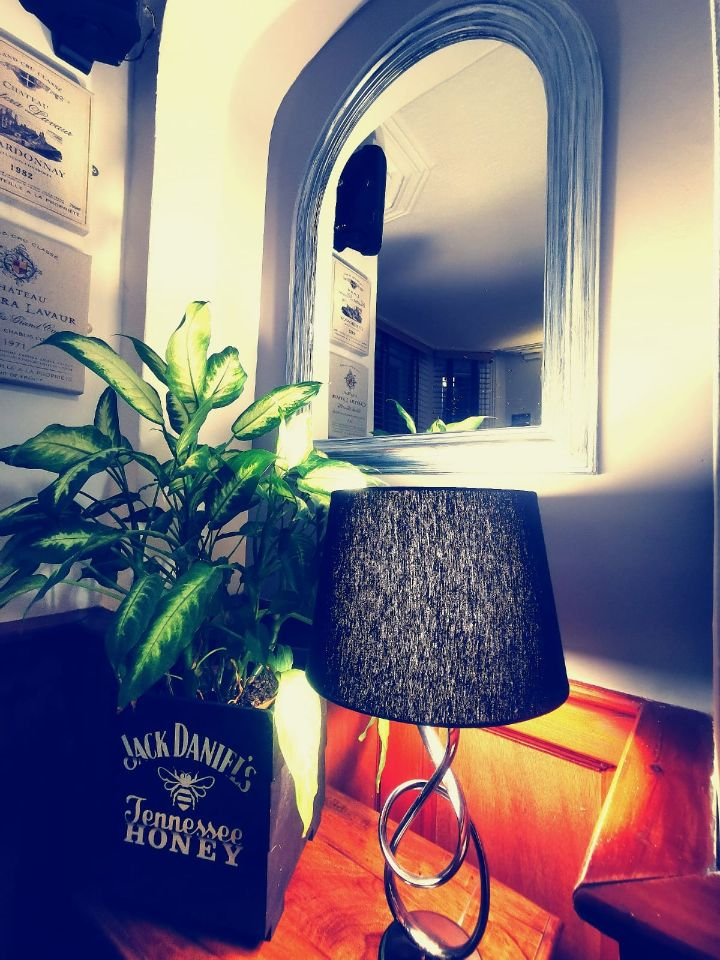 Lamp, Plant and Mirror